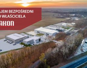Magazyn, hala w inwestycji Jakon Poznań Swadzim Park, symbol LH