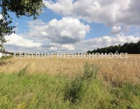 Działka na sprzedaż, Bydgoski Koronowo Tryszczyn, 95 000 zł, 1325 m2, CNI-GS-109192