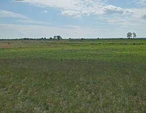 Działka na sprzedaż, Bydgoski Białe Błota Prądki, 90 000 zł, 4500 m2, 3/11593/OGS