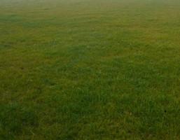 Działka na sprzedaż, Warszawa Ursynów Puławska, 16 000 000 zł, 7300 m2, 17174
