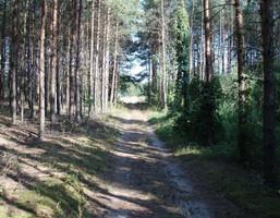 Działka na sprzedaż, Toruński (Pow.) Zławieś Wielka (Gm.) Zarośle Cienkie, 264 000 zł, 17 600 m2, 2
