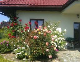 Dom na sprzedaż, Wrocław Psie Pole Karłowice, 979 800 zł, 170 m2, ZJ0000d874d18