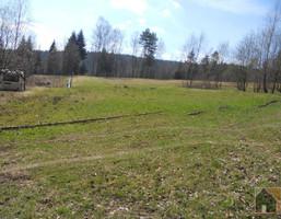 Działka na sprzedaż, Myślenicki (pow.) Tokarnia (gm.) Tokarnia, 245 000 zł, 7300 m2, m1089