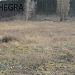 Działka na sprzedaż, Bydgoszcz M. Bydgoszcz Łęgnowo, 6 068 000 zł, 13 486 m2, HEG-GS-107643-4