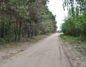 Działka na sprzedaż, Wągrowiecki Skoki Wysoka, 410 000 zł, 23 000 m2, DRN-GS-3413