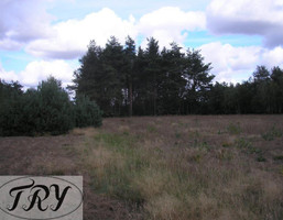 Rolny na sprzedaż, Łaski (Pow.) Łask (Gm.) Wrzeszczewice Wrzeszczewice, 58 000 zł, 7100 m2, 333441
