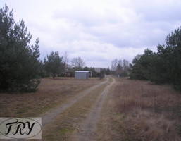 Budowlany-wielorodzinny na sprzedaż, Pabianicki (Pow.) Dłutów (Gm.) Drzewociny Drzewociny, 49 000 zł, 1400 m2, 454930