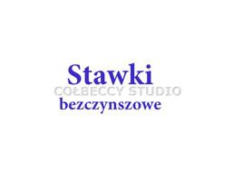 Kawalerka na wynajem, Toruń M. Toruń Stawki, 800 zł, 40 m2, TRS-MW-14677