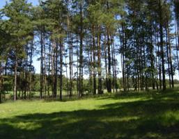 Działka na sprzedaż, Świecki (Pow.) Bukowiec (Gm.) Bramka, 32 000 zł, 20 000 m2, 144