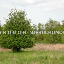 Działka na sprzedaż, Trzebnicki Wisznia Mała Ozorowice, 85 000 zł, 1077 m2, WRO-GS-28899