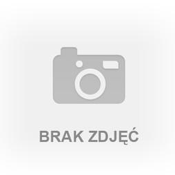 Kawalerka na sprzedaż, Sosnowiec M. Sosnowiec Niwka, 99 900 zł, 30,7 m2, SHN-MS-59593